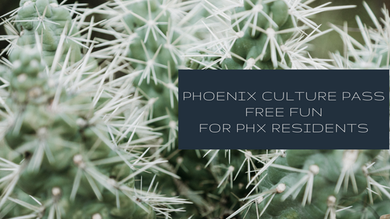 Fun things to do with kids phoenix